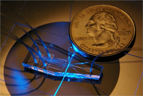 "laboratoryequipment:  Chip ""Sees"" in 3D to Diagnose HIV, LeukemiaInexpensive, portable devices that can rapidly screen cells for leukemia or HIV may soon be possible thanks to a chip that can produce three-dimensional focusing of a stream of cells, according to researchers. ""HIV is diagnosed based on counting CD4 cells,"" says Tony Jun Huang, associate professor of engineering science and mechanics at Penn State. ""Ninety percent of the diagnoses are done using flow cytometry.""Huang and his colleagues designed a mass-producible device that can focus particles or cells in a single stream and performs three different optical assessments for each cell. They believe the device represents a major step toward low-cost flow cytometry chips for clinical diagnosis in hospitals, clinics and in the field.Read more: http://www.laboratoryequipment.com/news-Chip-Sees-in-3D-to-Diagnose-HIV-Leukemia-053112.aspx"