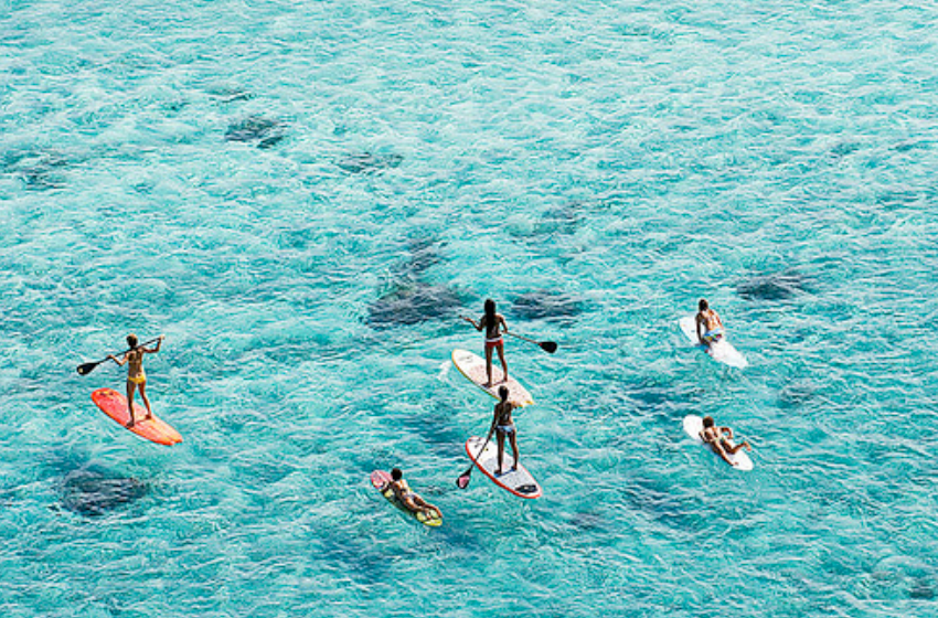 Paddle boarders. By Jeff Hornbaker.