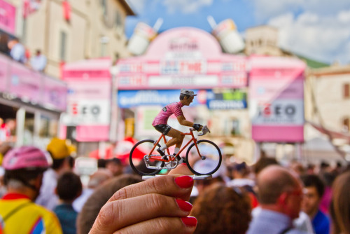 Tiny giro nickrearden:  My NEXT year's #giro avatar right there Nice work Mr flowizm on flickr