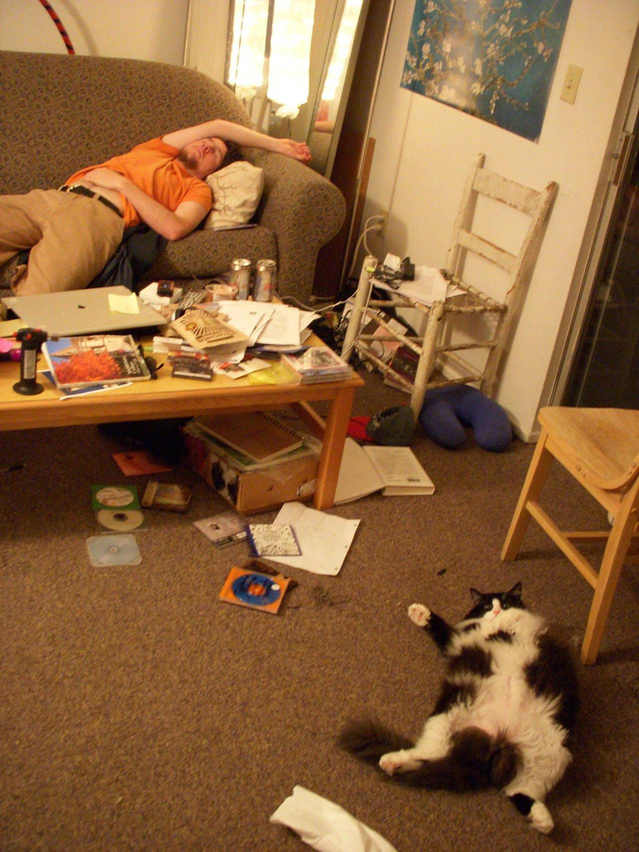 (via Cat learned how to sleep from my college boyfriend… - Imgur)