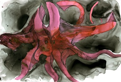 "berzerker cephalopod : watercolors, fountain pen ink and india ink on yupo synthetic paper: 4"" x 6"""