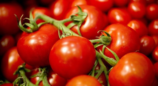 verticaltheory:  The recently decoded tomato has 7,000 more genes than a human.  wow.