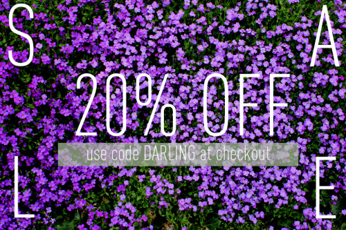 20% off in the shop today, till 5pm! Use the code DARLING at checkout. From 6-9, come to 213 SW Ash for our big Darling Buds of May closing party!