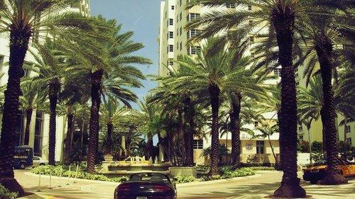 ~Especial de Miami~ on We Heart It. http://weheartit.com/entry/29630560