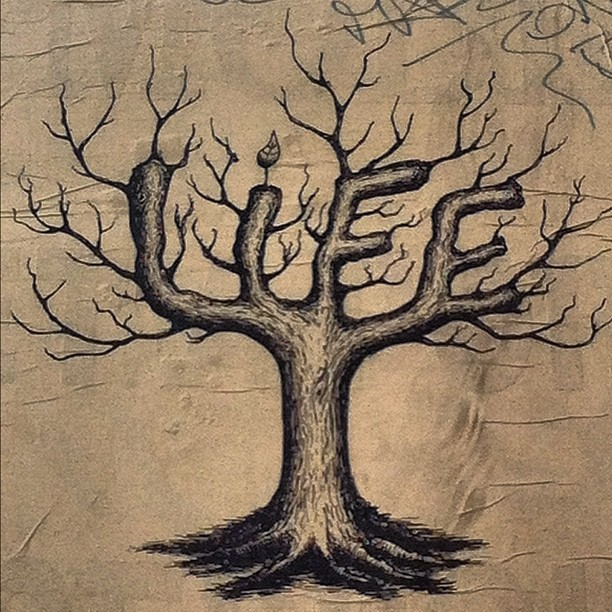 Tree of Life (Taken with instagram)