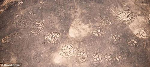 "Thousands of patterns that are similar to the Nazca lines found in the Middle East  ""Satellite and aerial photography has revealed mysterious stone 'wheels' that are more numerous and older than the Nazca Lines in countries such as Syria, Saudi Arabia and Jordan. The structures are thought to date back 2,000 years, but why they were built is baffling archaeologists and historians.'In Jordan alone we've got stone-built structures that are far more numerous than the Nazca Lines, far more extensive in the area that they cover, and far older,' David Kennedy, a professor of classics and ancient history at the University of Western Australia, told Live Science.  He added: 'People have probably walked over them, walked past them, for centuries, millennia, without having any clear idea what the shape was.'The local Bedouin, a nomadic people found in Saudi Arabia, Jordan, Libya, Egypt and Israel, call them the 'works of the old men'.They are often found on lava fields – but don't fall into any pattern, according to Kennedy, whose research into them will be published in an upcoming issue of the Journal Of Archaeological Science.""Read more: http://www.dailymail.co.uk/sciencetech/article-2037850/Thousands-strange-Nazca-Lines-discovered-Middle-East.html#ixzz1voxVETQ1"
