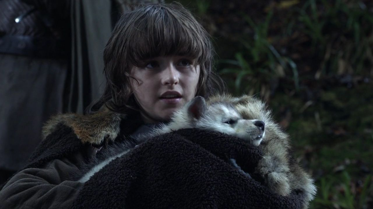 GAME OF THRONES (DAVID BENIOFF & D.B. WEISS, 2011-PRESENT)  omg wolf pup.