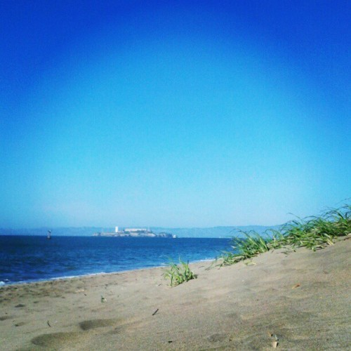 #SanFrancisco #ChrissyField #Beach #Summer #Sun #Alcatraz (Taken with Instagram at Chrissy Field)