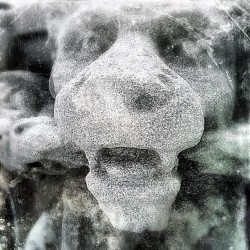 stone lion #stone #sculpture #igers #tashsebastian #igmasters #statigram  (Taken with instagram)