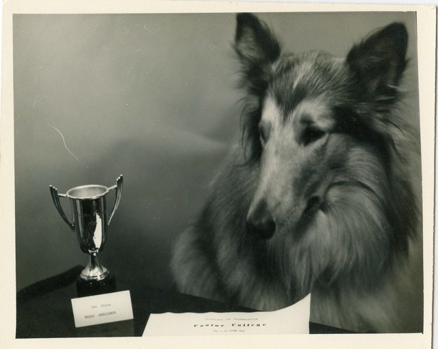 mudwerks:  (via Size of trophy disappoints collie ~ Candler Arts)  captions