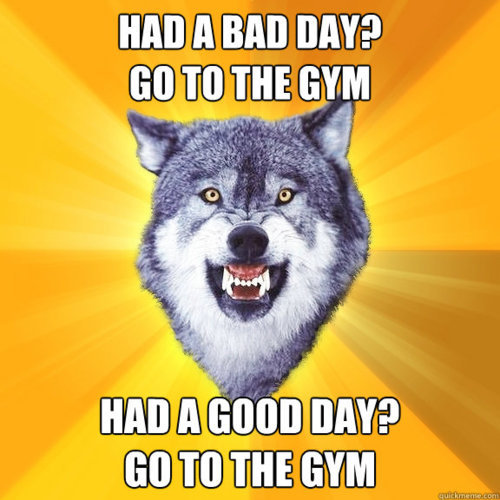 Had A bad Day? Go To The GYM, HAD A Good Day? Go To The GYM