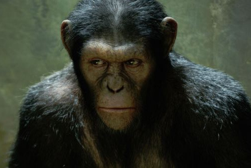New title and release date for Planet Of The Apes sequel Fox have made some big announcements regarding the sequel to last year's runaway success, Rise Of The Planet Of The Apes, including a new title and an official release date…