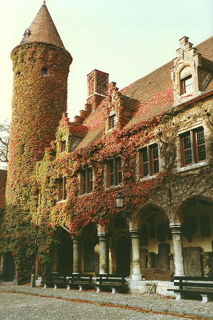 | ♕ |  ivy-covered corridor - Bruges  | by © Patrick