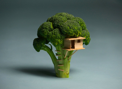 La casa su un broccolo. by Brock Davis