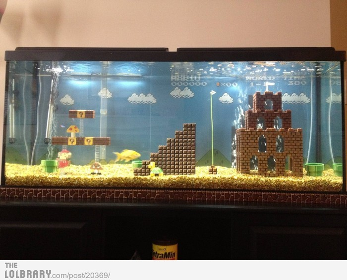 Mario AquariumFollow this blog for the best new funny pictures every day