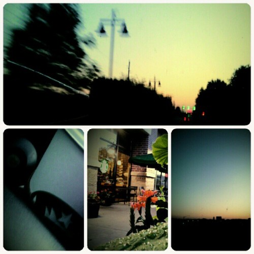 #photoadayJune Day 1: Morning —- Sights from the Drive to Work. #morning #sunrise #sky #silhouette #coffee #starbucks #nature #water #dew #commute #driving #flowers  (Taken with instagram)