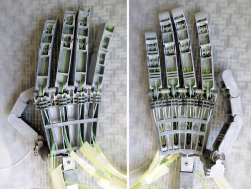 (via Anthromod MK2 3D-Printed Robotic Hands: Terminators Set to Arise Next Year - Technabob)