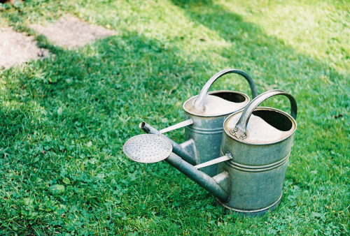 watering cans by Liis Klammer on Flickr.