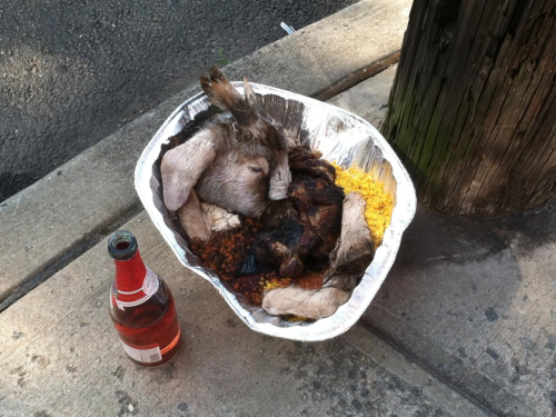 Santeria offering in the Ironbound this morning.