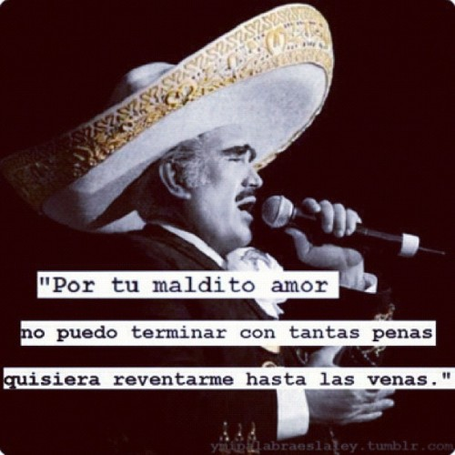 palabras-words-infinity:  Por tu maldito amor!! #vicentefernandez #jalisco (Taken with instagram)
