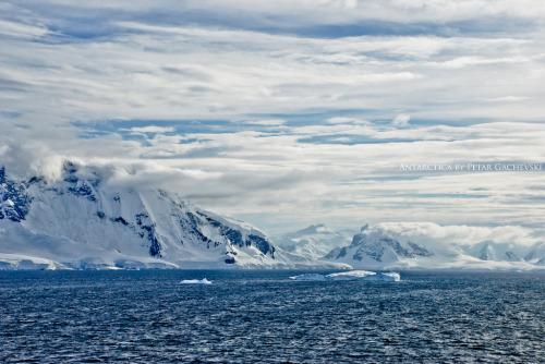 Paradise Bay, Antarctica©Petar Gachevski