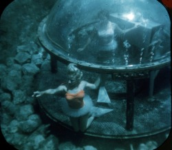 I want an underwater bubble room in Weeki Wachee, 1950's.