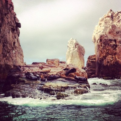 Sea lion colony near Lands End - Baja California, Cabo (Taken with instagram)