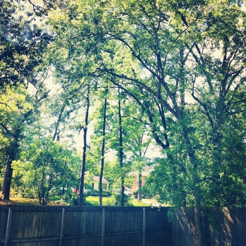 It's a beautiful day in the hood (Taken with Instagram at The Upper East Side)