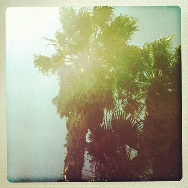 June 1, officially beach dreaming.  (Taken with instagram)