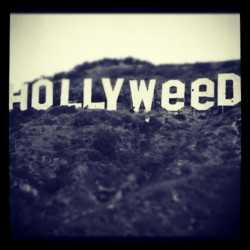 #Hollywood #hollyweed #cool #swag #US (Pris avec instagram)