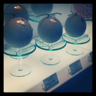 $200 melon. Dead serious. (Taken with instagram)