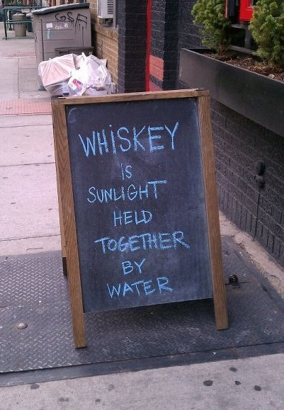 samiwaslike:  hennnypotter:  jennyaddams:  A+  Julia! Together we are whiskey!!! That's black rabbit! Sami! We need to go!