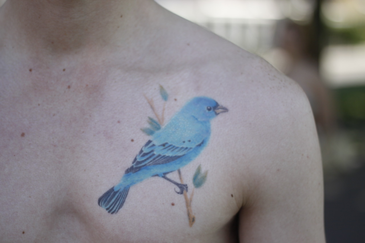 Miles' bird tattoo. Amsterdam, Netherlands.