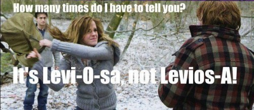 emmaclairebrown:  He will never understand, poor Ron :)