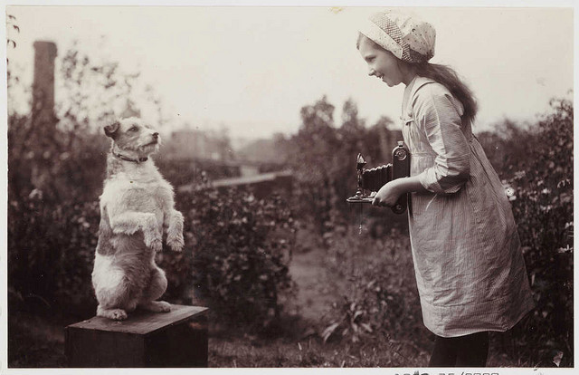 Girl Photographing a Dog by National Media Museum on Flickr.