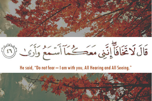 (Surah TaHa, 20:46)  Just in case you are feeling like Allah doesn't understand or love or want you here…. Know that Allah knows more about us than we think there is to know. May you find peace in Allah's presence.