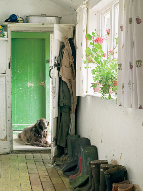 heartbeatoz:  (via Home & Garden: A Swedish England)