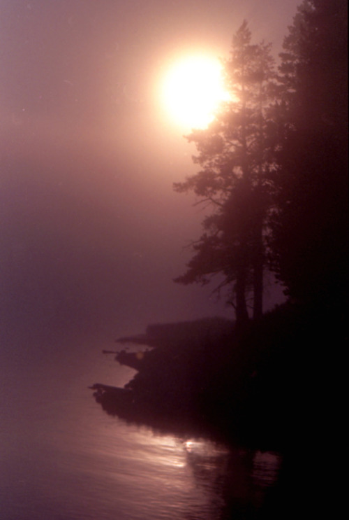 mer-de:  Foggy sunset over a lake