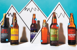 From West to.. East  Though Canada's craft beer renaissance may be developing slowly and still in its early stages, the movement is steady and irreversible. Which is good news for me.  So far, more interesting beers and diversity has sprung up on the west coast, notably in British Columbia. With native hops, privatized beer vendors, and a far flung geographic location that left a brewing legacy relatively unscathed from Prohibition; this region has picked up the reigns on inventive brewing much faster than its eastern counterparts. Which was bad news for me.   Until today. Tree Brewing Co's beers are making there way from Kelowna to Toronto to greet me, just as I cross the border. I'm not sure how this fortune has been made possible. Does anyone out there know if they are contract brewing in Ontario, or has there been some miraculous relaxation in cross-provincial distribution laws?