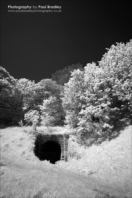 Tunnel (Sandsend) on Flickr.Filtered digital Infrared