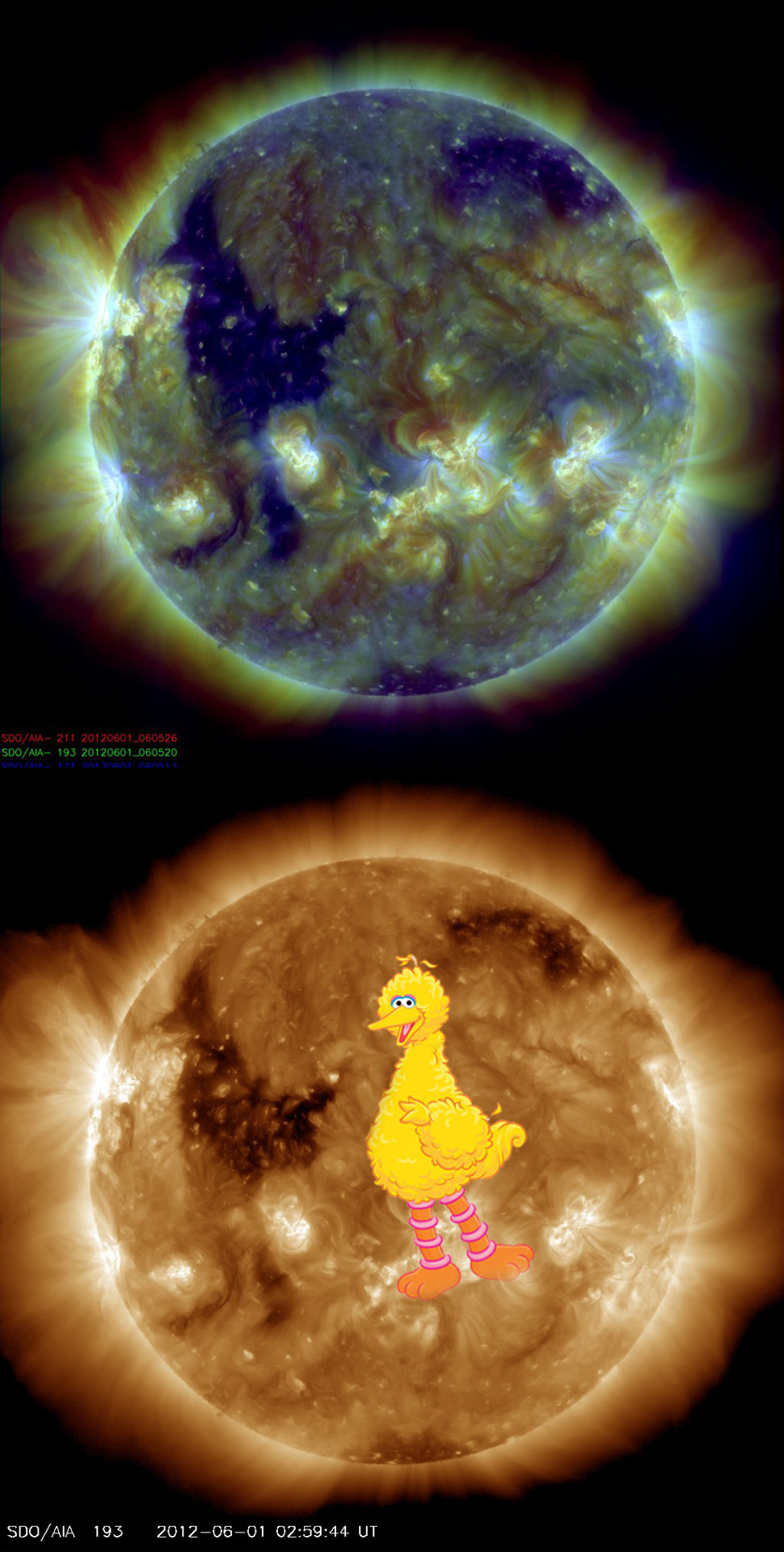 "Sesame Street's 'Big Bird' Spotted on Sun's Surface in Spacecraft Photo ""A new photo from a NASA sun-watching spacecraft highlights a huge solar feature that looks a lot like the beloved Big Bird from the children's television show ""Sesame Street."" The image, snapped today June 1 by NASA's Solar Dynamics Observatory (SDO) probe, actually shows a so-called coronal hole — an area where the sun's corona, or outer atmosphere, is dark. But the resemblance to Big Bird, or one of his feathered kin anyway, is uncanny."""