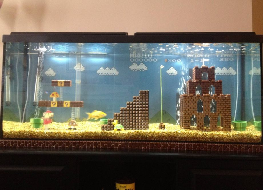 thebrobible:  What an awesome idea for a fish tank.