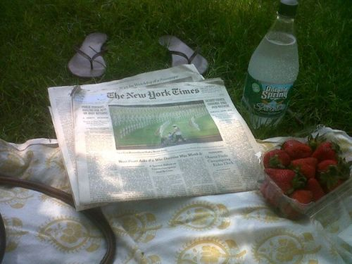 The @nytimes, Memorial Day edition #picnic —@amychozick