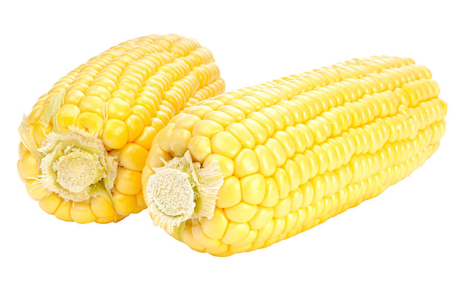 Corn by ~MoCity