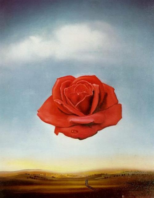 Savaldor Dalí - Rose Meditative (1958)