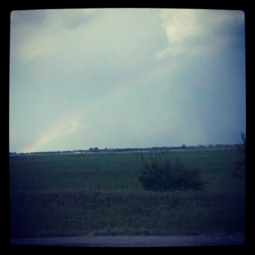 Hello rainbow (Taken with instagram)
