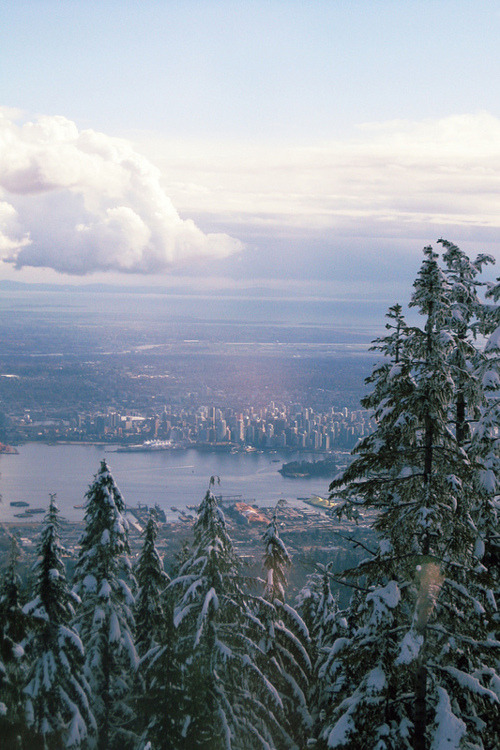 angela faye /// from yesterday, when i went up to grouse mountain for the first time in five years.