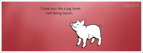 Love You Like A Pig Loves Not Being Bacon Facebook Cover