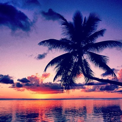 #hipster #yolo #beach #palm #sun #sand #waves #wild #free #relax ❤💚💛✌☀🌴🌅 (Taken with instagram)