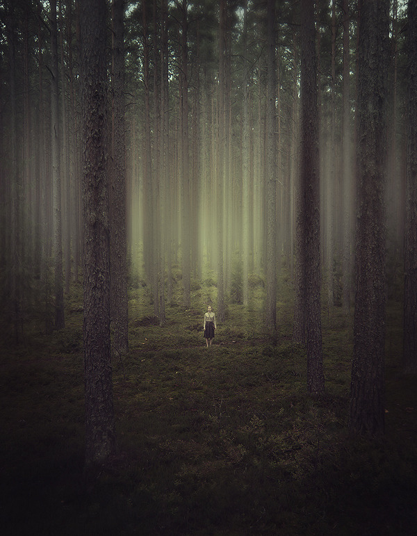 "intechnicolour:  (via 500px / Photo ""grow"" by Kirill Vorontsov)"